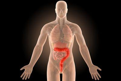 The Best Diet For Ulcerative Colitis: Splitting Fact From Fiction