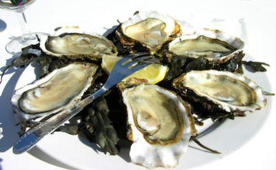 Norovirus-contaminated oysters sicken hundreds in Canada, USA