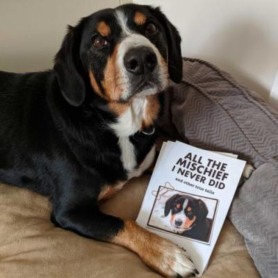 Book News! All the Mischief I Never Did and Other True Tails Available Now