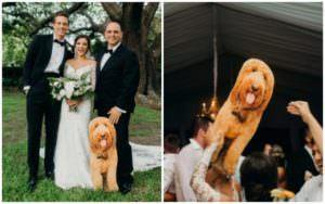 Bride's Dog Can't Come To Destination Wedding, But Her Dad Has A Solution