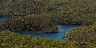 Tasmanian council blocks Halls Island, the world heritage wilderness of the state!