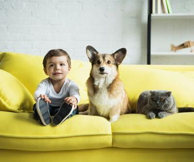 How to Keep the Peace Between Your Toddler and Dog