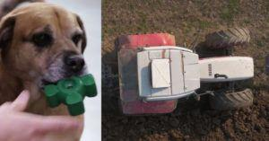 How a Farming Company Accidentally Invented Possibly The World's Strongest Dog Toy