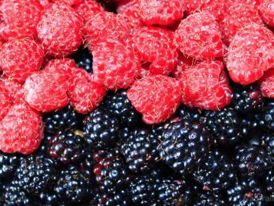 Black raspberries found to improve heart health in patients with metabolic syndrome