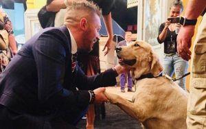 Tom Hardy Hangs With K9 At L.A. Premiere For Venom