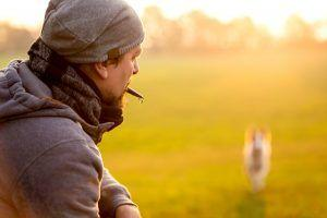 Getting Started with Dog Whistle Training