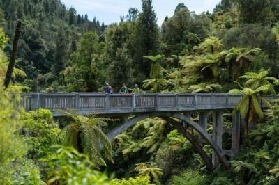 Experience the Whanganui River, the river with a legal ID