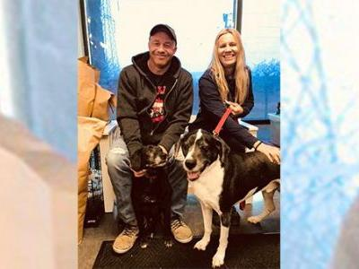 2 dogs that escaped Indiana man's euthanasia request find new home
