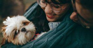 A Recent Study Set Out To Crack the Code On Dog People