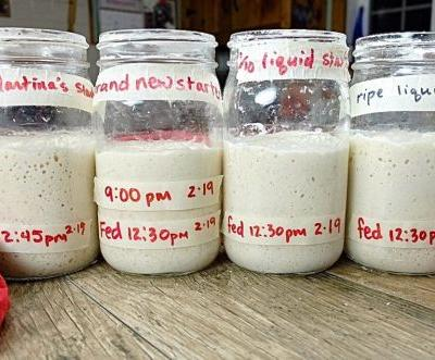 Sourdough starter troubleshooting: What does it take to kill your starter?