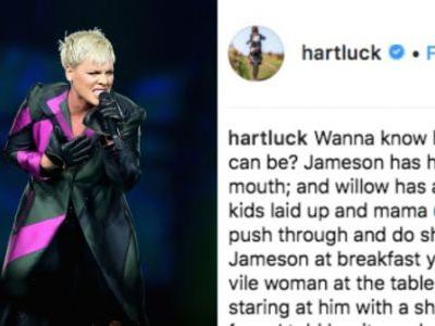 Pink's Son Got Hand, Foot, And Mouth On Her Tour Because Of Course He Did