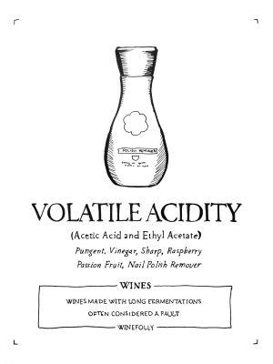 Weird Wine Flavors and the Science Behind Them
