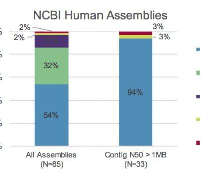 Data Release: Highest-Quality, Most Contiguous Individual Human Genome Assembly to Date