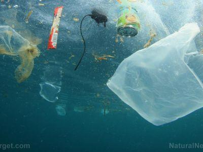 Long-term study looks at impact of ocean pollution across coastal environments and communities