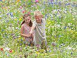Growing up in the countryside reduces an adult's risk of depression