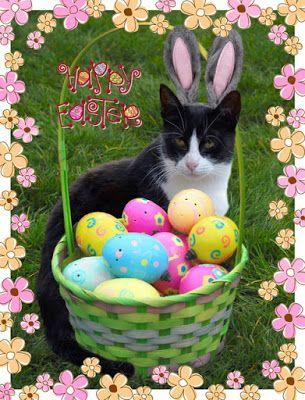 Wishing You All a Very Happy Easter!