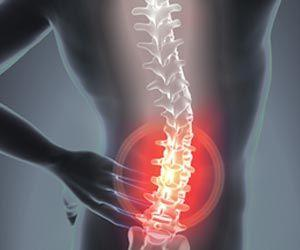 Immune Cells Can Offer Clues to Develop Treatment for Spinal Cord Injuries