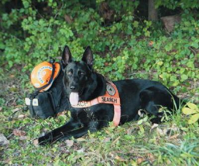 Autumn & Kona: A K-9 Search and Rescue Team