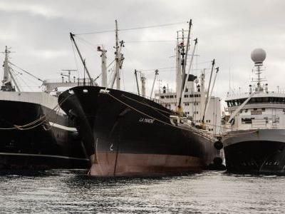 Variability in Peru fishery, PR hit for krill continue to tinge omega-3s sustainability picture