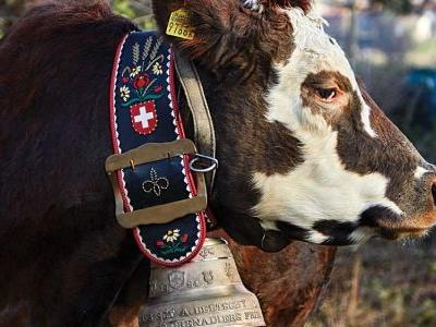 How Switzerland's Famous Dairy Cow Bells Are Made