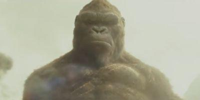 Kong: Skull Island Video Teases Lots of Giant Monsters