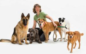 Petco Foundation President Susanne Kogut Talks About How Fosters Save Lives