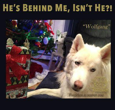 Wait! Who Sees You When You're Sleeping, Wrapping, or Being Naughty or Nice?