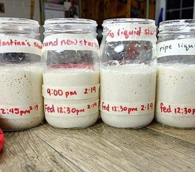 Sourdough starter troubleshooting