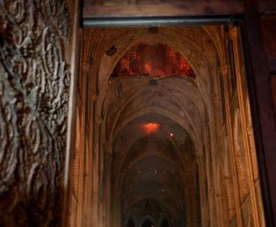 A Challenge of Rebuilding Notre Dame: The Forests That Supplied Its Wood Are All But Gone