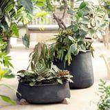 Prep Your Plants! Anthropologie's Garden Line Has Planters Too Stylish to Resist