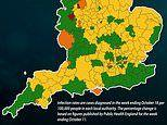 Almost half of all councils in England saw their Covid-19 infection rate DROP last week