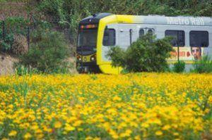 Earth Day, Los Angeles bus, train and bike commuters to get free rides