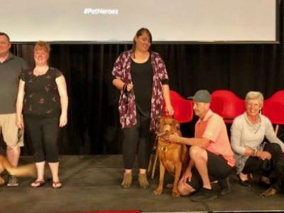 Celebrate 3 amazing 2019 Purina Animal Hall of Fame PetHeroes