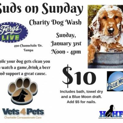 Suds on Sunday January 31st!