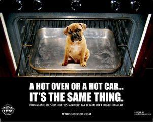 As Temperatures Rise, Remember Risk of Leaving Your Dog in a Hot Car