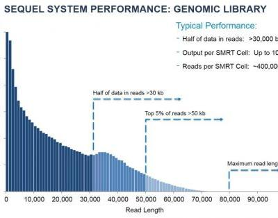 New Software, Polymerase for Sequel System Boost Throughput and Affordability