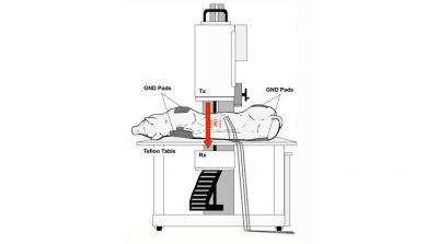 Non-invasive Radiofrequency Field Treatment to Produce Hepatic Hyperthermia: Efficacy and Safety in Swine