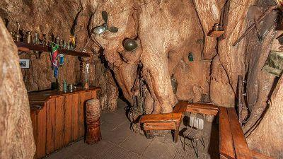 Step Inside the South African Bar In a Tree