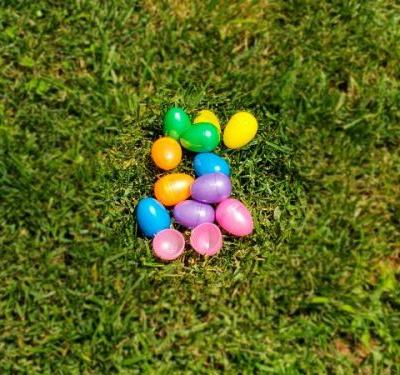7 Tips for Creating a Dog-Friendly Easter Egg Hunt