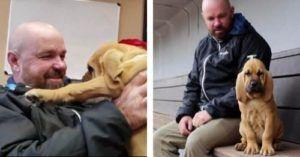 Heartbroken Smokies Groundskeeper Is Surprised With A New Puppy After Losing His Beloved Hound Dog