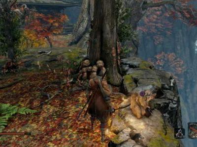 Where To Find Rice In Sekiro Shadows Die Twice