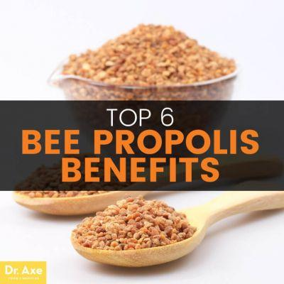 Bee Propolis Benefits Immunity in the Fight Against Cancer, Candida & Parasites
