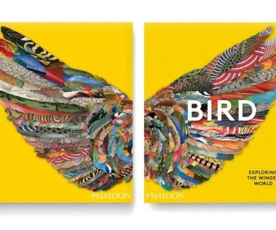 Phaidon to Chronicle the Cultural History of Birds in a New Art Book