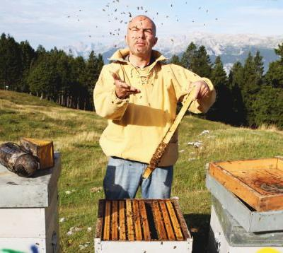 All About Miele: How Honey Is Made