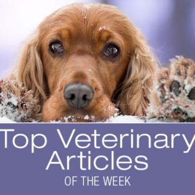 Top Veterinary Articles of the Week: Veterinary Emerging Topics, Drooling, and more