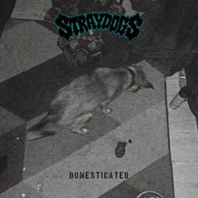Stream The Fearsome New Stray Dogs HC EP Domesticated