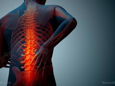 Study: Can nanoparticles be used to deliver treatments to injured brain and spinal cord cells?