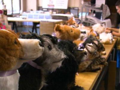 Cute animals on demand: Business makes pet toy look-alikes, fetches celebrity clientele