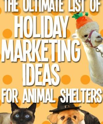 The Ultimate List of Holiday Marketing Ideas for Animal Shelters and Rescues
