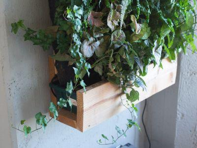 Self-watering vertical gardens are the lazy way to make your home more Instagram-worthy